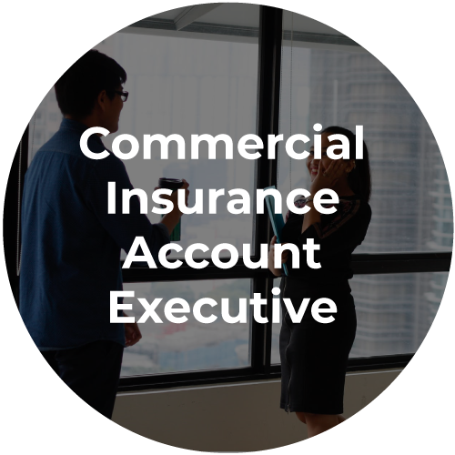 commercial-insurance-exec-icon