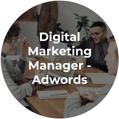digital-marketing-manager-icon