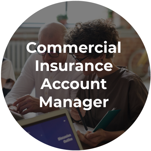 Commercial-Insurance-Account-Manager-icon